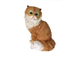 Кот персидский
