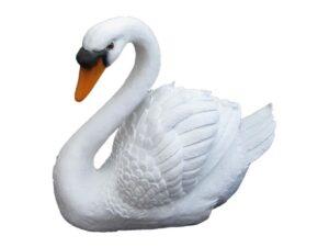 Лебедь новый