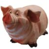 Свинка толстушка