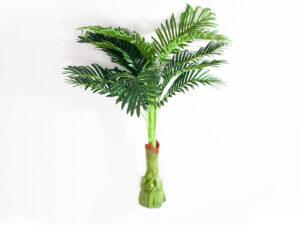 Пальма малая